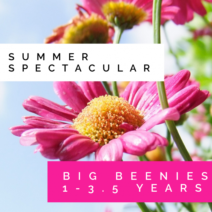 Big Beenies - Summer Spectacular - Bambeenies - photo#49